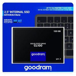 Cl100 120 GB interne SSD