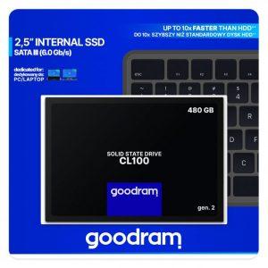 Cl100 480 GB interne SSD