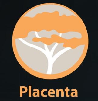 Placenta in Kodi